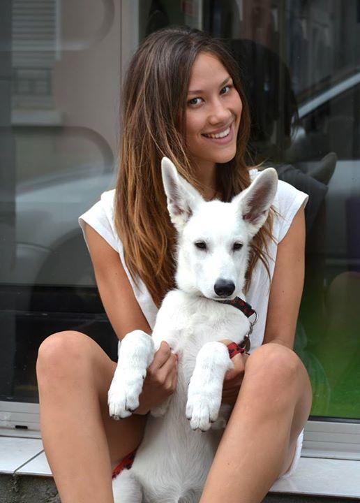Adopter chien guide d aveugle réformé - Chien bonheur